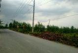 18000m2 Đất sào QH đất ở Mặt Tiền Sở Quýt Ấp Vàm, xã Thiện Tân, Đồng Nai gần cụm CN Kỳ Lân