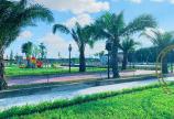 Vợ chồng li dị bán gấp lô đất đối diện trường, ngay sát công viên siêu đẹp giá siêu rẻ