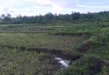 8,3 sào đất nông nghiệp view ruộng, suối, có sẵn hồ