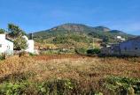 Đất đường Thủy Điện, Hiệp Thạnh, Bê tông 3m, 5mx30m, Sổ hồng riêng, giá chỉ 1.3 tỷ