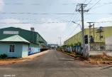 Đất vip, đầu tư ngon ngay trung tâm Huyện Đồng Phú , vị trí đẹp - Bình Phước