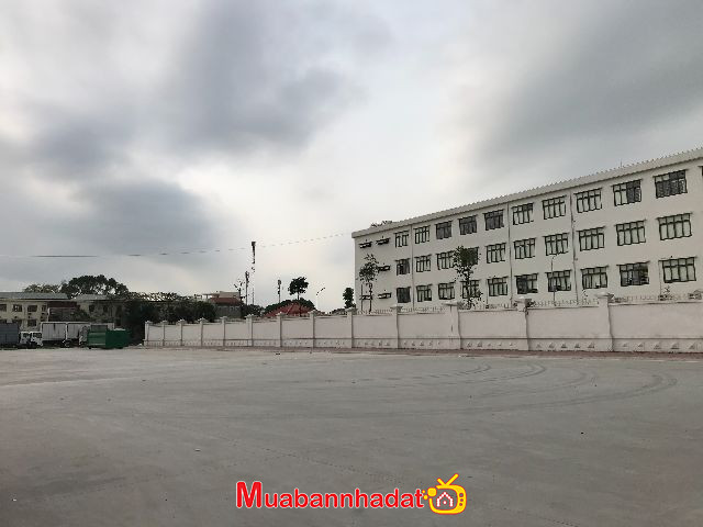 Bán đất 130 m2, mặt đường K D, Quan Âm, Bắc Hồng, Đông Anh Hà Nội.