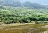 Bán 2016m2 gần suối khoáng Kim Bôi, có suối trong vắt, sơn thủy hữu tình, chỉ 850 triệu