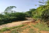 Bán nhanh lô đất diện tích 400thổ cư, 757m2 cây lâu năm, còn lại rừng sản xuất 1,9ha thực tế 2,3ha