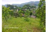 Bán đất Cao Phong 3000m có sẵn nhà sàn view thoáng.
