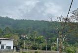 9144m2 - 400m2 thổ cư -  Đất và biệt thự nghỉ dưỡng lưng chừng núi ở Định An, giá chỉ 65 tỷ