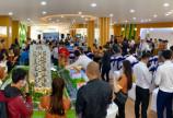 Dự án Legacy Central - Thuận An - Bình Dương