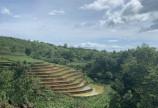 bán đất 3300m sapa 2 khu đô thị du lịch ven biên giới giá đầu tư