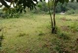 Lô đất thổ cư nghỉ dưỡng giá hấp dẫn bạn CÓ MUỐN sở hữu. Lương Sơn HB