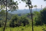 Cần BÁN NHANH lô thổ cư nghỉ dưỡng có view đẹp tại TP hòa bình giá rẻ